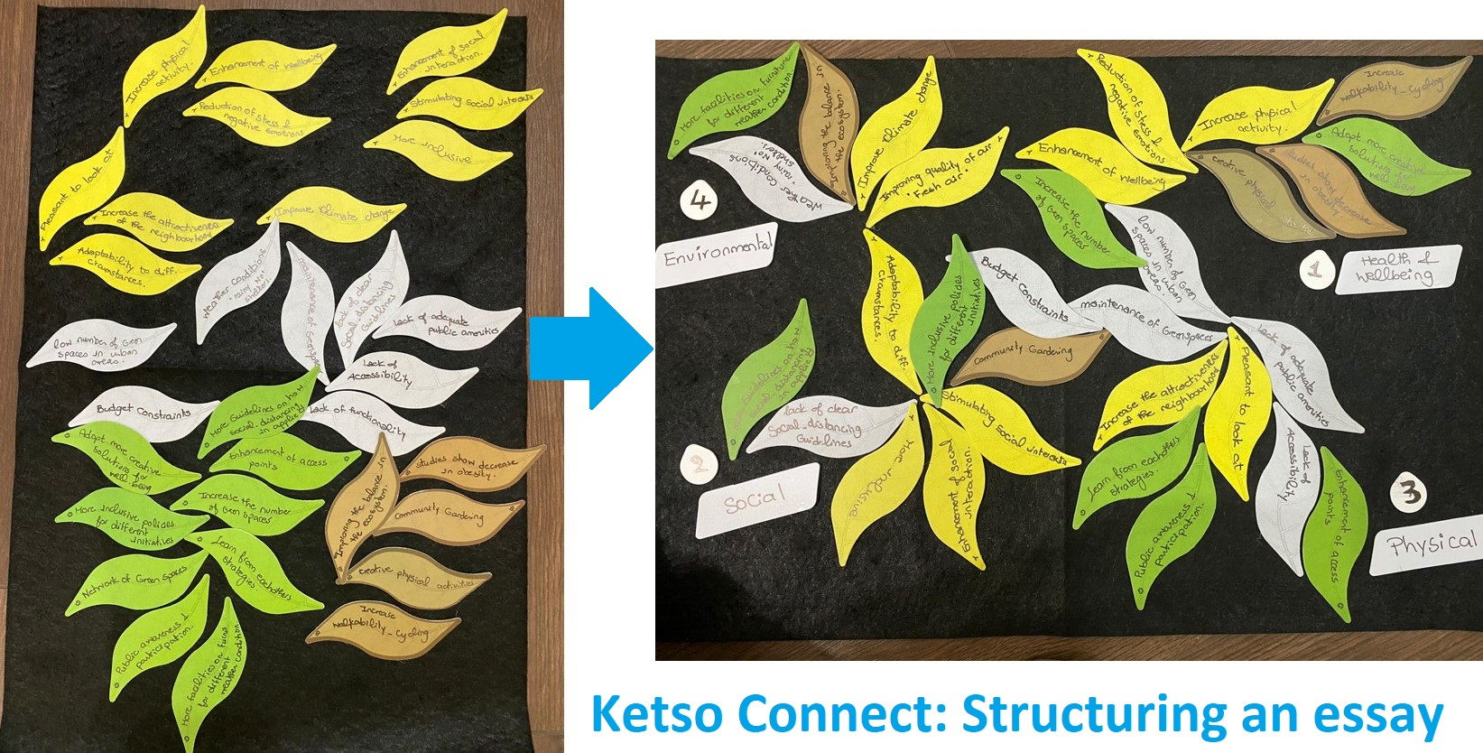 Ketso COnnect felts with coloured leaves for different aspects of essay writing